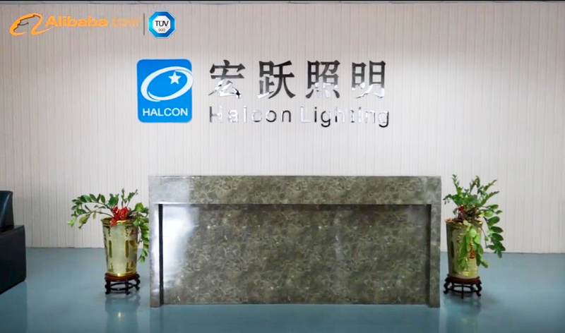 Halcon lighting Array image180