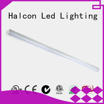 Halcon stable led strips company for school