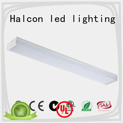 practical buy led light bulbs personalized for school Halcon lighting