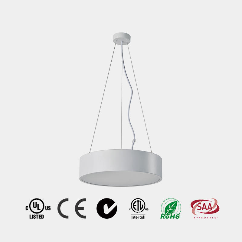 Concise LED Ceiling Lamp