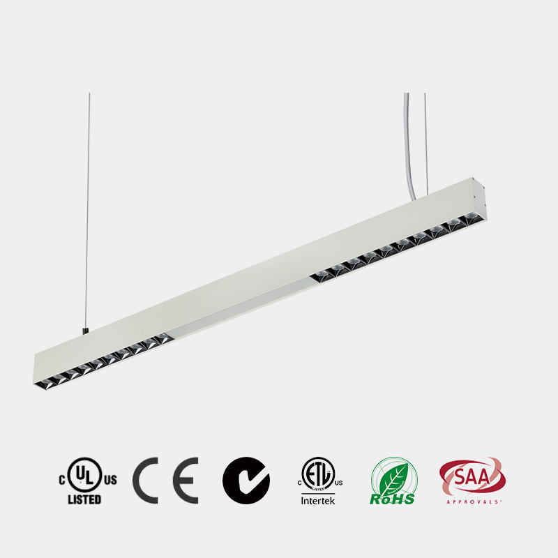 Pendant LED Light P2001A,P2001B