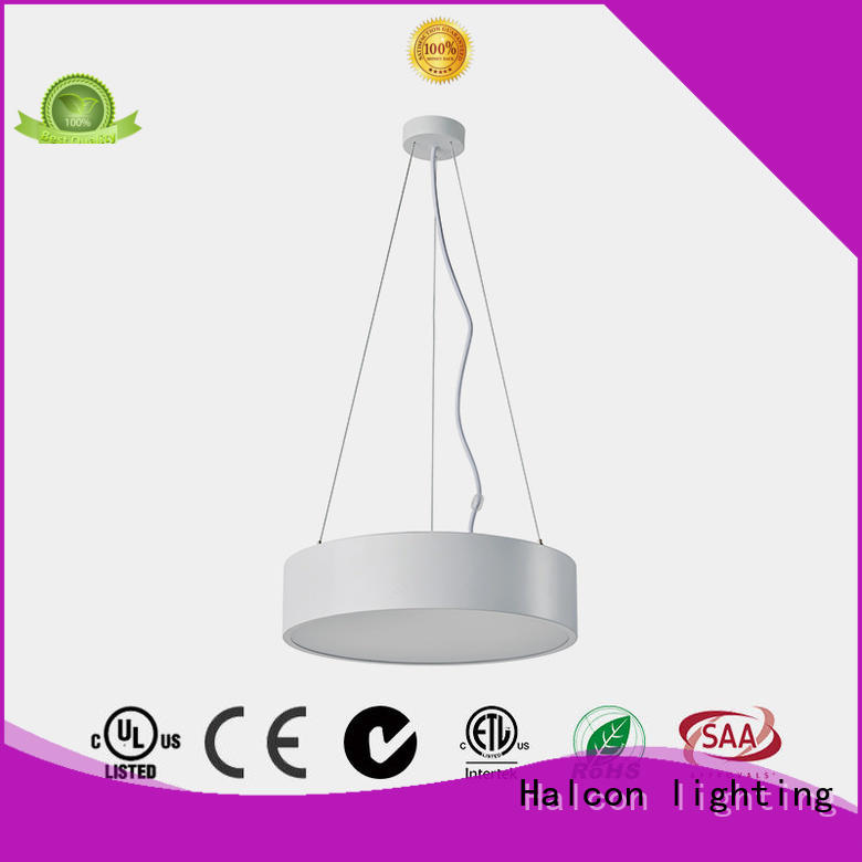 professional pendant led light supply for indoor use