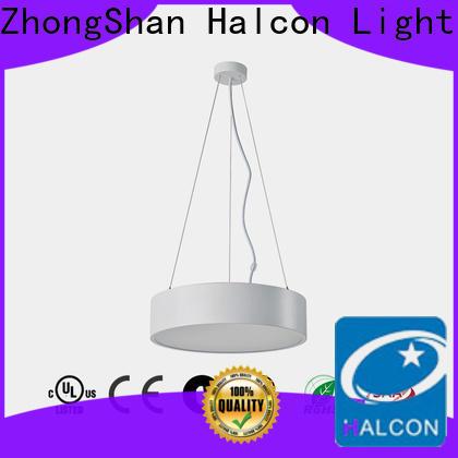 professional led hanging lights best manufacturer for living room