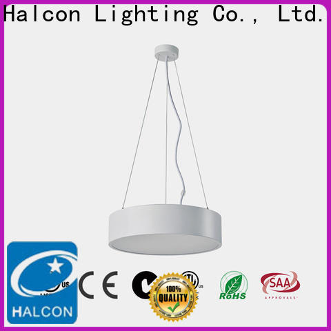 hot selling cool pendant lights company for lighting the room